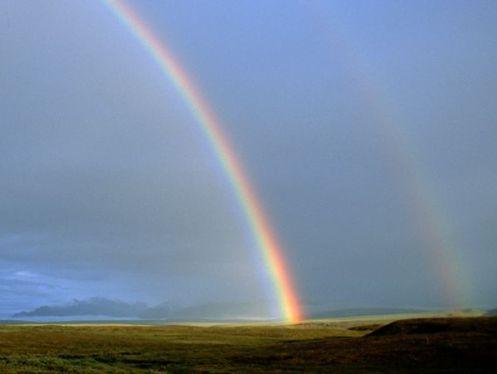 tundra-rainbow